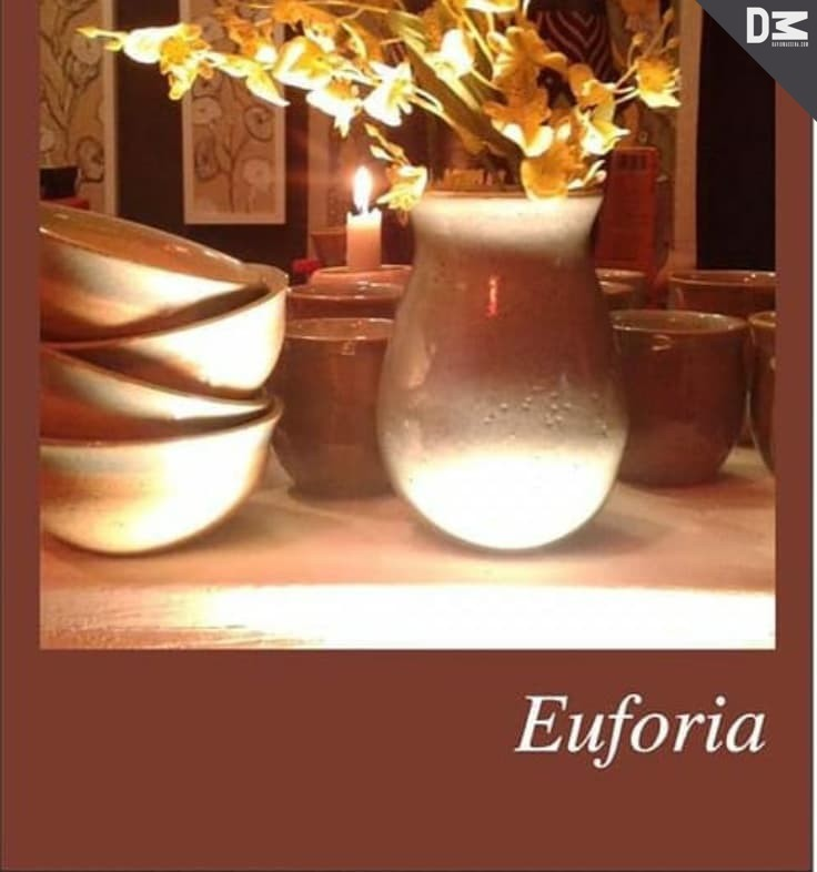 Euforia mostra o trabalho de Luciléa Noel